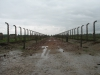Vyhlazovací tábor Osvětim II - Březinka (Auschwitz II - Birkenau), cesta k plynovým komorám.